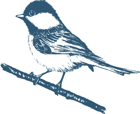 tit: Silhouette of a blue tit on a white background. Change the color is one click of a mouse Illustration