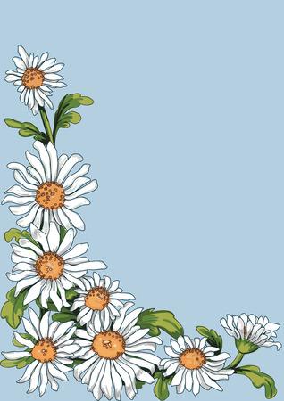 Bloemen hoek van kamille plant op een blauwe achtergrond. Beroerte is op een aparte laag en kan dan worden verwijderd van de bloemen zien zoals schilderen. Stock Illustratie