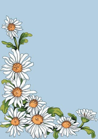 copy spase: Floral corner from chamomile plant on blue background. Stroke is on a separate layer and can be removed then the flowers look like painting.