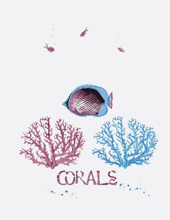 Ilustración vectorial de corales y peces tropicales
