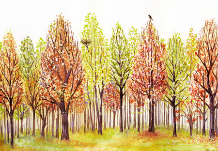 birds scenery: Watercolor landscape with autumn trees