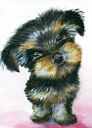 yorkshire terrier: Watercolor cute Yorkshire Terrier puppy