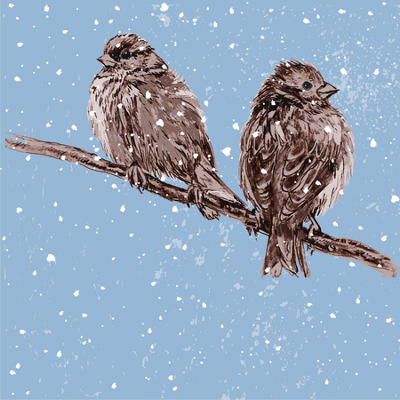 perching: Vector illustration two furry sparrows perching on a tree branch Illustration