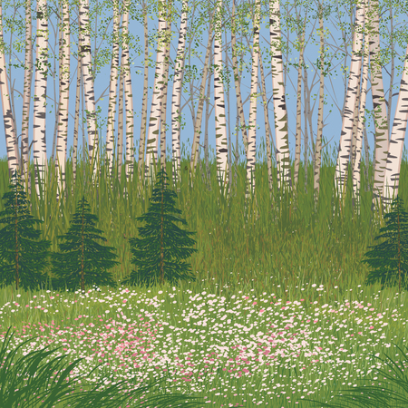 flowering: illustration a flowering meadow in a forest Illustration