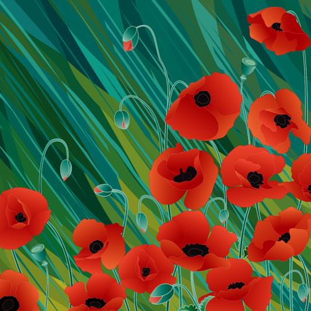 Vector red poppies on abstract green background