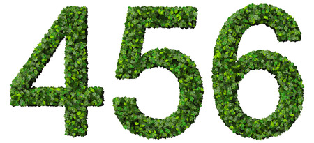 5 6: Numbers 4 5 6 made from green leaves isolated on white background. Stock Photo