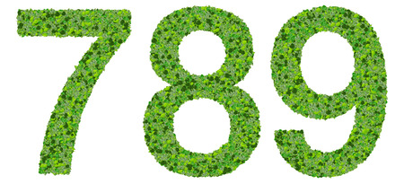 7 8: Numbers 7 8 9 made from green leaves isolated on white background.