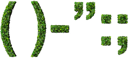 parentheses: parentheses, quotation marks, minus, semicolon, colon made from green leaves isolated on white background. ()-:; Stock Photo