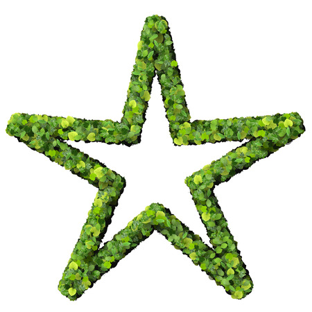 Star  sun made from green leaves isolated on white background. 3D render. photo