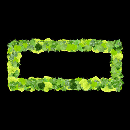 quadrant: Quadrangle, rectangle made from green leaves isolated on white background. 3D render.