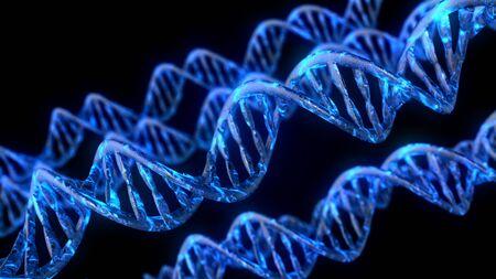 DNA-Code. Abstrakte polygonale 3D-Drahtmodell-DNA-Molekülhelixspirale Standard-Bild