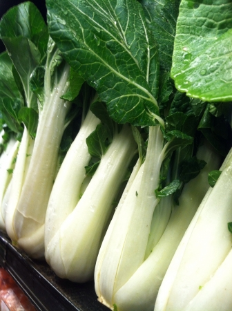 row of fresh picked organic green and white at closeup in market
