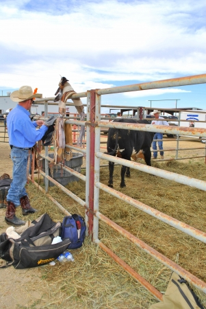 buckaroo: Cowboy wearing cowboy hat and jeans getting ready at a country rodeo Editorial