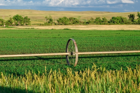 Irrigation equipment in bright green field of grass under blue skies photo