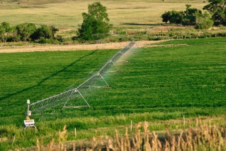 Green farmland being irrigated  photo
