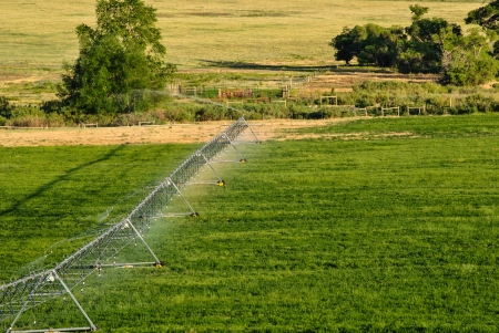 Green farmland being watered with irrigation system photo