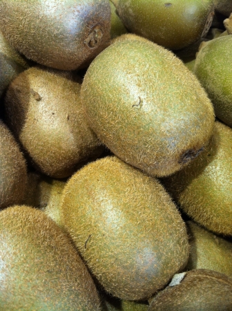 Bunch of fuzzy golden organic kiwi fruit close up at market