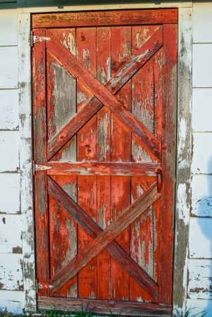 Old red barnwood door with peeling paint in the daylight