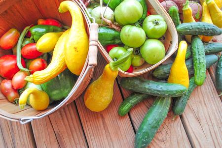 farm fresh: cestini di fattoria verdure fresche biologiche su tavola di legno Archivio Fotografico