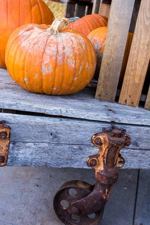 Orange fall pumpkins on an antique cart outdoors