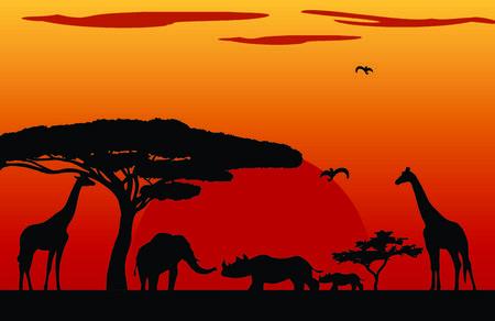 kenya: Sunset Africa in Kenya Illustration