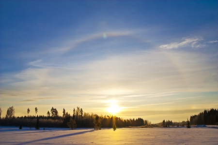 gloriole: Sun halo at winter
