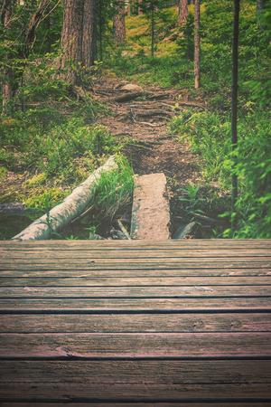 trailway: Empty wooden floor nature background
