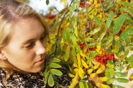 causcasian: Young blond woman touching ashberries in an autumn park
