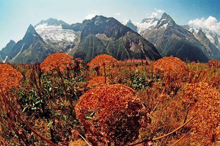 dombai: Autumn in Dombai,Karachai,Western Caucasus,Russia. Stock Photo