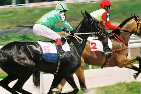 huellas de animales: Carrera de caballos, en el norte del C�ucaso, Rusia.