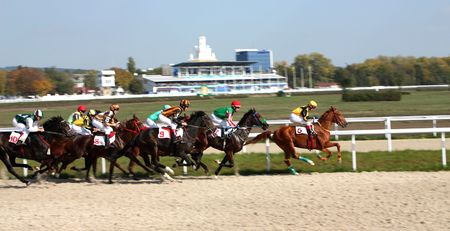 Hippodrome in city Pyatigorsk,Northern Caucasus,Russia.  12 October 2008 year.Horse race of the prize closing the race season.Horse saddle  thoroughbred breed.
