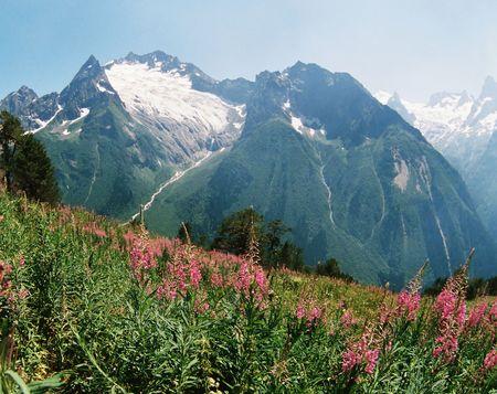 dombai: Summer day in Dombai,Western Caucasus,Russia.