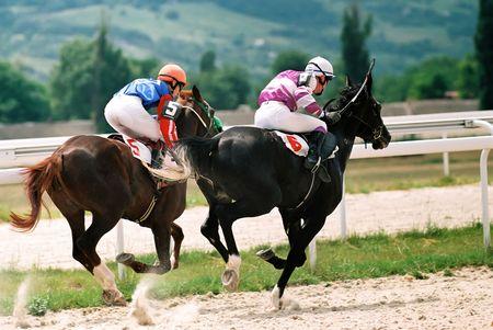 pyatigorsk: Horse race del premio Pyatigorsk, nel Caucaso settentrionale, in Russia. Archivio Fotografico