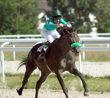A racehorse and jockey cross the finish line first in a horse race. photo