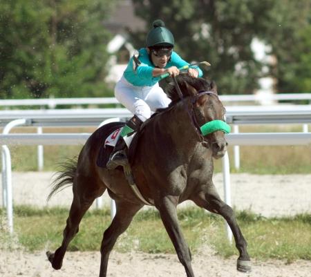 sports venue: Un jinete de caballos de carreras y cruzar la l�nea de meta en una carrera de caballos.