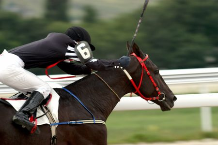 horse saddle:  A racehorse and jockey cross the finish line first in a horse race.