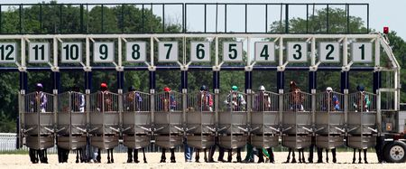 horse harness: Start gates for horse races.