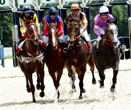 Horse race of the prize Dombai. Hippodrome in Pyatigorsk,Northern Caucasus,Russia. 2.05.2009.