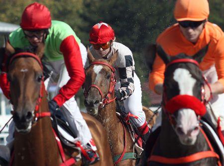 pyatigorsk: Corsa di cavalli. Ippodromo in Pjatigorsk, Caucaso, la Russia.