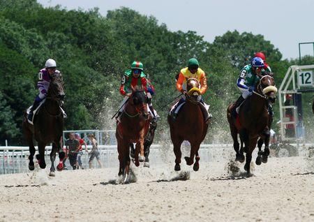 pyatigorsk: PYATIGORSK, RUSSIA - JULY 12: Start racing for the prize of Russian President July 12, 2009 in Pyatigorsk, Caucasus, Russia.