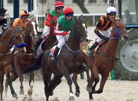 pyatigorsk: PYATIGORSK, RUSSIA - 2 maggio: La gara per il premio della Tagora.Jockey Smirnoff, Aituganov,Kulinich,Eminov,Lavrikov.May 2, 2010 in Pjatigorsk, Caucaso, la Russia.