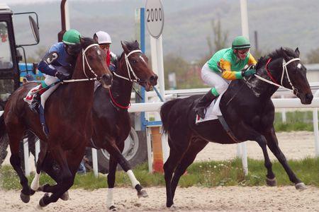 PYATIGORSK, RUSSIA - MAY 9: The race for the prize of the 111 Caucasian Cavalry Division.Jockey Pshukov,Ulubaev,Hatkov.May 9; 2010 in Pyatigorsk; Caucasus; Russia. Stock Photo - 6935456