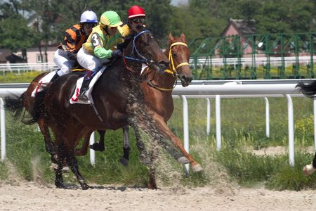 pyatigorsk: PYATIGORSK, RUSSIA - 30 maggio: la corsa per il premio di La Probni; maggio 30; 2010 in Pjatigorsk; Caucaso; Russia.