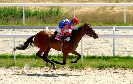 razas de personas: Un caballo de carreras y jockey cruzan la l�nea de meta en primer lugar en una carrera de caballos. Foto de archivo