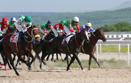 PYATIGORSK, RUSSIA - JUNE 5: Unidentified riders and their horses compete for the The race for the prize of the Afins Wuda on June 5, 2011 in Pyatigorsk, Caucasus, Russia.  Stock Photo - 9730326