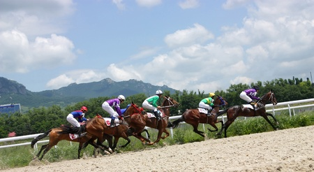 PYATIGORSK, RUSSIA - JULY 4: Jockeys (L - R) Hatkov, Hamidulin, Aituganov,Mardanov  and Guseinov race for the prize of the Oktava on July 4, 2011 in Pyatigorsk, Caucasus, Russia. Image ID: 79956127  Stock Photo - 9890765