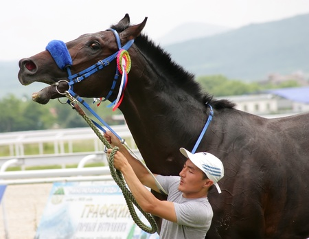 PYATIGORSK, RUSSIA - JULY 10:The  unidentified groom and bay stallion Proper Redi after winning the Anilina race on June 10, 2011 in Pyatigorsk, Caucasus, Russia.  Stock Photo - 9891630