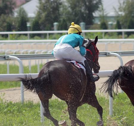 pyatigorsk: PYATIGORSK, RUSSIA-AUGUST14: Jockey Rinat Panjokov e la baia stallone gara intelligente per il premio della Dnya Stroitela agosto 14,2011 in Pyatigorsk, Caucaso, Russia.