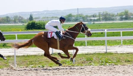 running nose: Action shot of jockeys in horse race.
