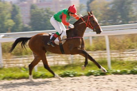Horse racing in Pyatigorsk,Northern Caucasus